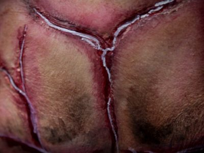 Maquillage professionnel effets spéciaux cicatrices 2Halloween 2019 - à domicile